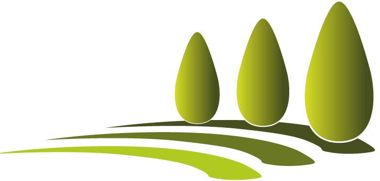 Paysagiste 77 arbres et jardins services cr ation et for Creation espace vert